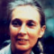 Jane Goodall, British Primatologist