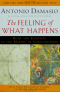 The Feeling of What Happens, Damasio